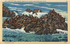 Postcard CA San Francisco Seal Herd Seal Rock Cliff House Seal Lions NrMint 40s