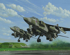 SEPECAT Jaguar 6 Squadron Sqn Aircraft Aeroplane Aviation Painting Art Print