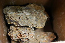 10 lbs Dragon Stone - Ohko Stone - ADA Style Aquascaping Rock - Aquascape Stone