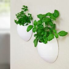 2 x Life Pod - Self Watering Planters Herb Plants & Herbs Flower Pots Indoor
