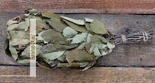 Apfelbaum-Reisig für Sauna ca . 45-50 cm lang, Яблоневый веник для бани