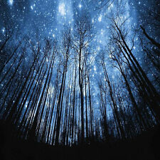 Forest with Night Sky 10'x10' CP Backdrop Computer Printed Background XLX-947