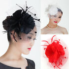 Lady Derby Feather Flower Fascinator Cocktail Headband Clip Wedding Party