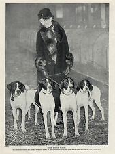 POINTER DOGS AND LADY ARRIVING AT CRUFTS DOG SHOW OLD ORIGINAL 1934 DOG PRINT
