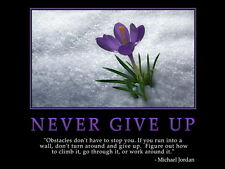 "055 Motivational Inspirational - Never Give Up Quotes 19""x14"" Poster"