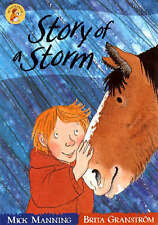 Story of a Storm by Mick Manning Wonderwise Paperback  Book