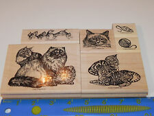 Stampin Up FANCY FELINES Retired Stamp Set 6 Cat Kitties Kitty RETIRED Unused