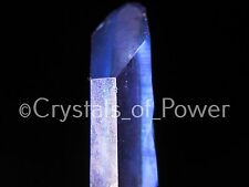 ONE POWERFUL STARBRARY INDIGO VIOLET AURA LEMURIAN SEED QUARTZ CRYSTAL POINT! SM