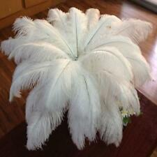Feashion 10PCS Nature Ostrich Feathers Home Party Decor Color White New
