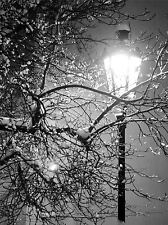 LONELY STREET LAMP WINTER NIGHT BLACK WHITE PHOTO ART PRINT POSTER BMP869A