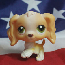 Littlest Pet Shop LPS #79 Tan White Cocker Spaniel Puppy Dog Green Eyes