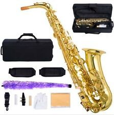 New Professional Eb Alto Sax Saxophone Paint Gold with Case and Accessories +++