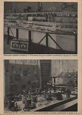 SAALFELD, Werbung um 1944, E. Doepel&Co. Spielwaren-Porzellan-Glaswaren-Verkauf