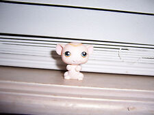 Littlest Pet Shop ANGEL MOUSE  LPS Hasbro E
