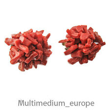 Lachs Koralle Ohrclips Ohrringe earrings ear clips coral Astkoralle sardegna rot