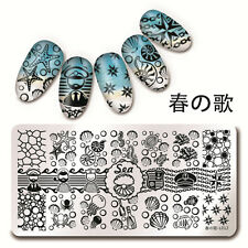 Nail Art Stamp Template Sea Shell Starfish Design Image Plate 34582