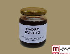 MADRE D'ACETO + ISTRUZIONI mother of vinegar culture MÈRE DE VINAIGRE Essigmutte