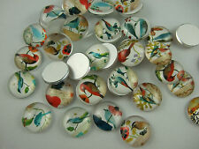 20 x Assorted Colours Bird Images Round Glass Cameo Cabochons 16mm
