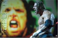 WWE WRESTLING POSTER ~ TRIPLE H SCREAM 22x34 Paul Michael Levesque Hunter 8867