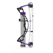 Grackle Compound Bow 1:3 Scale Model Kit - Purple FULLY ASSEMBLED