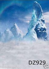 3X5ft FROZEN Vinyl Custom Studio Backdrop Photography Foto Prop Background DZ929
