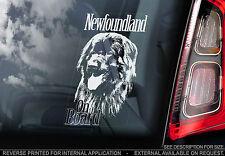 Newfoundland - Car Window Sticker - Newfie Dog on Board Sign Gift Giant Newf
