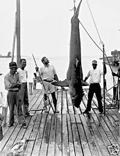 """Photo Reprint 17"""" by 22"""" Ernest Hemingway with shark on dock"""