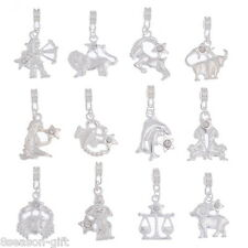24 Mixed Silver Plated Clear Rhinestone Zodiac European Charm Dangle Beads
