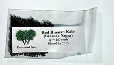 280 Red Russian Kale Seeds All Natural Non GMO Freshly Packed For 2016