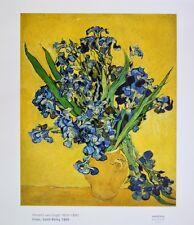 van Gogh Stillleben mit Irisstrauss Poster Kunstdruck Bild 70x60cm