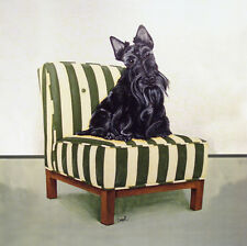 "SCOTTISH TERRIER DOG FINE ART PRINT - ""Scottie on Stripes"""
