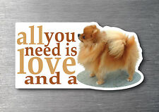 All you need is a Pomeranian sticker 7 year water & fade proof vinyl pup dog