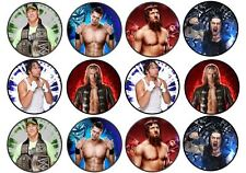 24 WWE Cup Cake Toppers Edible Wafer Paper