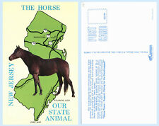 Horse the State Animal on New Jersey Map Postcard