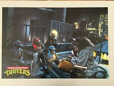 TEENAGE MUTANT NINJA TURTLES,PHOTO BY JOHN BRAMLEY RARE AUTHENTIC 1991 POSTER