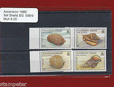1989 Ascension Island Shells SG 506/9 Set of 4 MUH