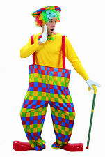 Adulto HOOPED ARCOBALENO CIRCO CLOWN FANCY DRESS UP PARTY COSTUME U00 198