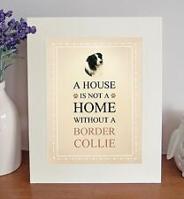 "Border Collie 10"" x 8"" Free Standing A HOUSE IS NOT A HOME Picture Lovely Gift"