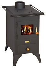 Wood Burning Stove Retro Cast Iron Plate Log Burner Fireplace Mini 5kw FREE GIFT
