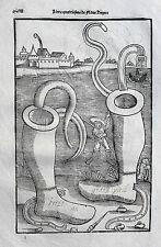 VEGETIUS Végèce de l'art militaire Kriegskunst Re Militari Holzstich1535 Epitoma