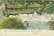 Turner Falls MA Cows having a drink at the Dam and Falls at Factory Hollow 1907