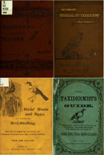 40 OLD BOOKS ON TAXIDERMY TECHNIQUES STUFFING MOUNTING ANIMALS BIRDS INSECTS DVD