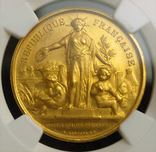 1890s, France (3rd Republic). Gold Agriculture Prize Medal. (12.46gm) NGC MS-64!