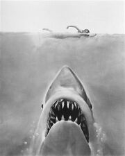 JAWS Poster Print 24x20""