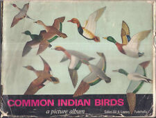INDIA - COMMON INDIAN BIRDS - A PICTURE ALBUM BY SALIM ALI & LAEEQ FUTEHALLY