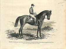 Pur sang Thoroughbred HORSE BOIARD PROPRIETAIRE DELAMARRE DERBY CHANTILLY 1873