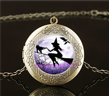 Vintage Witch In Moon Fly Cabochon Glass Brass Locket Pendant Necklace#L71