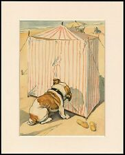 BULLDOG AT THE SEASIDE INVESTIGATES TENT LOVELY DOG PRINT MOUNTED READY TO FRAME