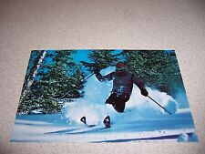 1970s SKIING INSTRUCTOR SADDLEBACK MOUNTAIN SKI AREA RANGELEY ME. VTG POSTCARD