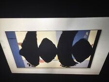 """Robert Motherwell """"Elegy Spanish -In Situ""""Abstract Expressionism 35mm Slide"""